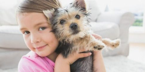 smiling-little-girl-holding-her-yorkshire-terrier-puppy[1]