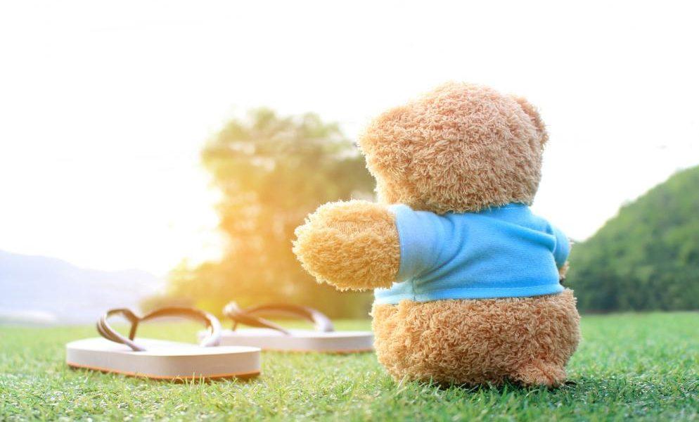 teddy-bear-sitting-on-the-grass-with-burst-sunrise-light-dream