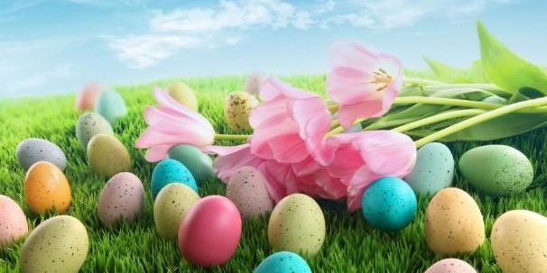 easter-eggs-with-pink-tulips-on-grass[1]