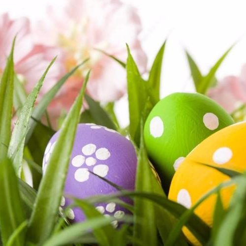 row-of-easter-eggs-in-fresh-green-grass[1]