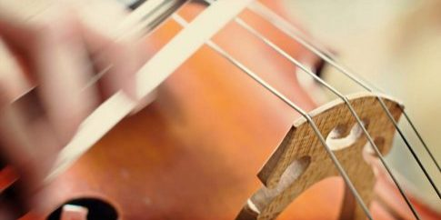 violin-closeup