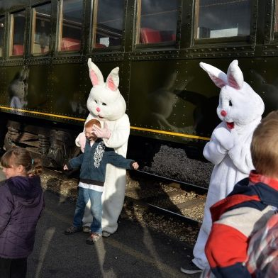 ticket-to-ride-on-the-easter-bunny-train-discount-12550902-regular[1]